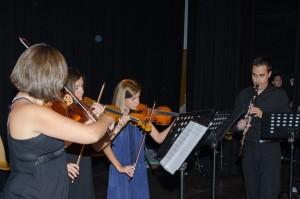 clases de violin